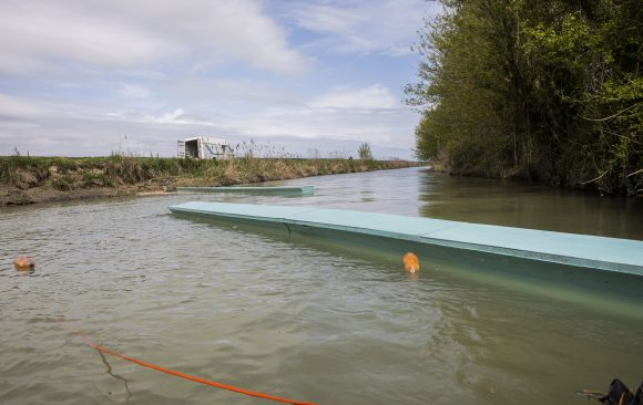 2019: Teste de instalação no Rio Lamone, Itália